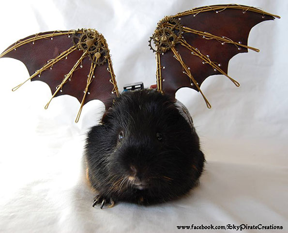 Guinea Pig Steampunk Cosplay