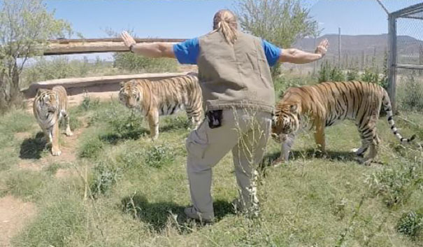zookeepers-recreating-jurassic-world-raptor-scene-17__605