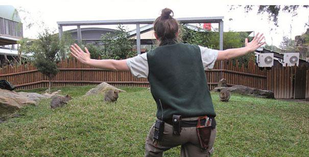 zookeepers-recreating-jurassic-world-raptor-scene-2__605