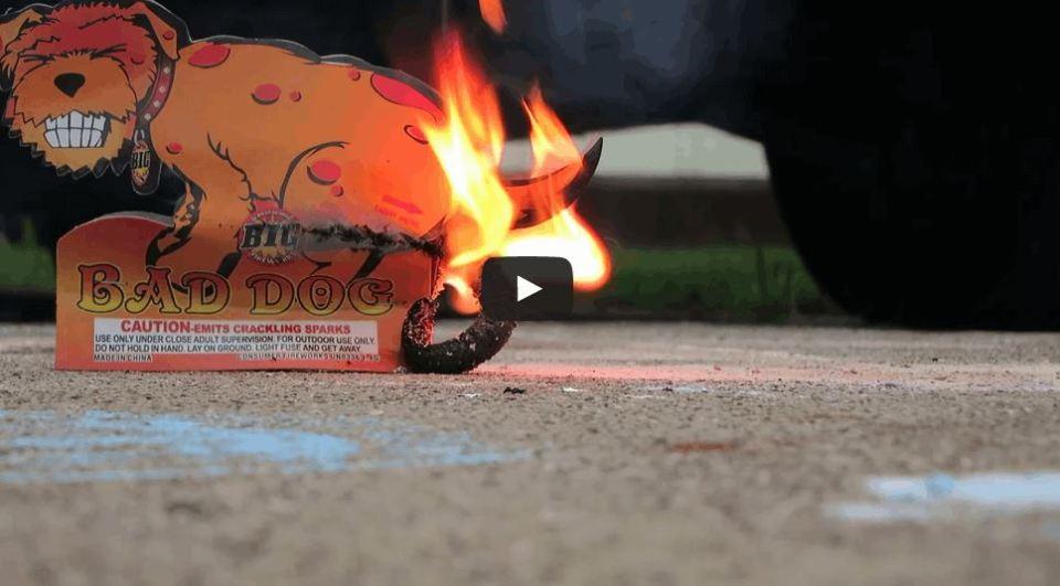 A Dog-Shaped Firework That Poops Fireworks