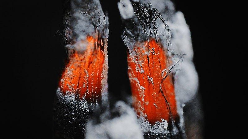 extreme-incense-burning-close-up