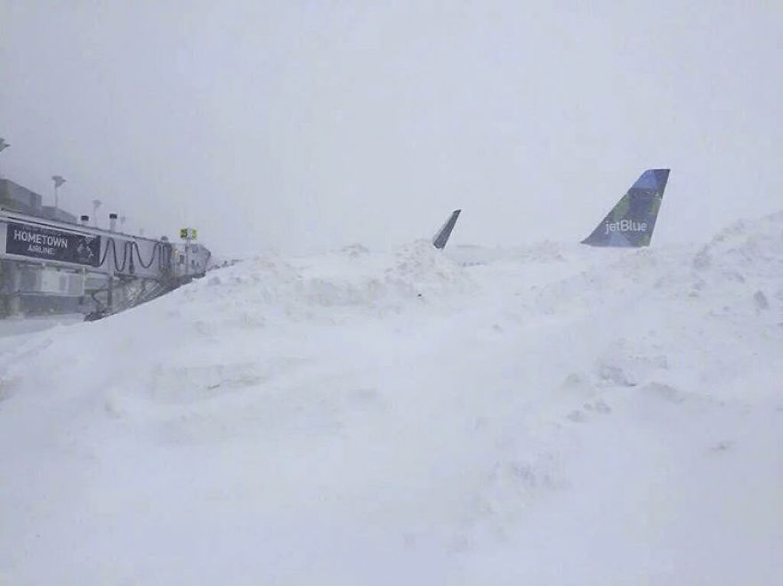 15-pics-that-perfectly-capture-how-insane-blizzard2016-ls-8__880