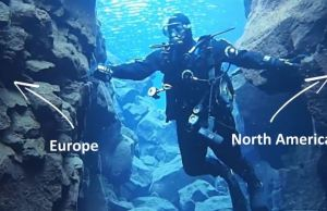 Diving Between Two Continental Plates