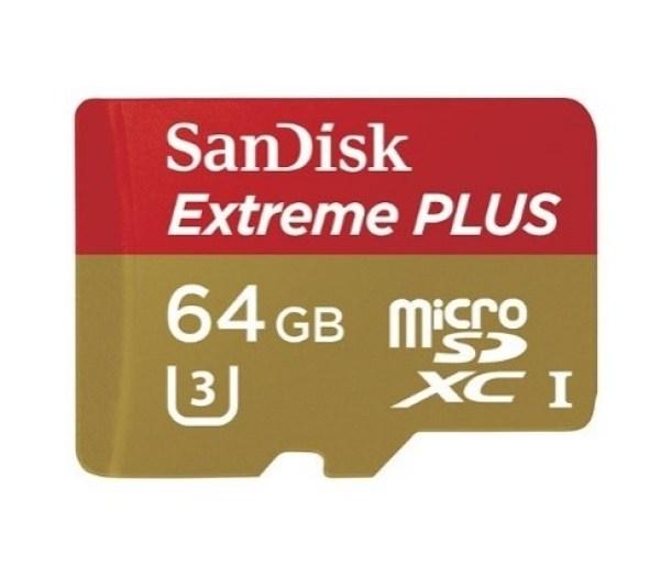 A 64 GB Micro-SD Card