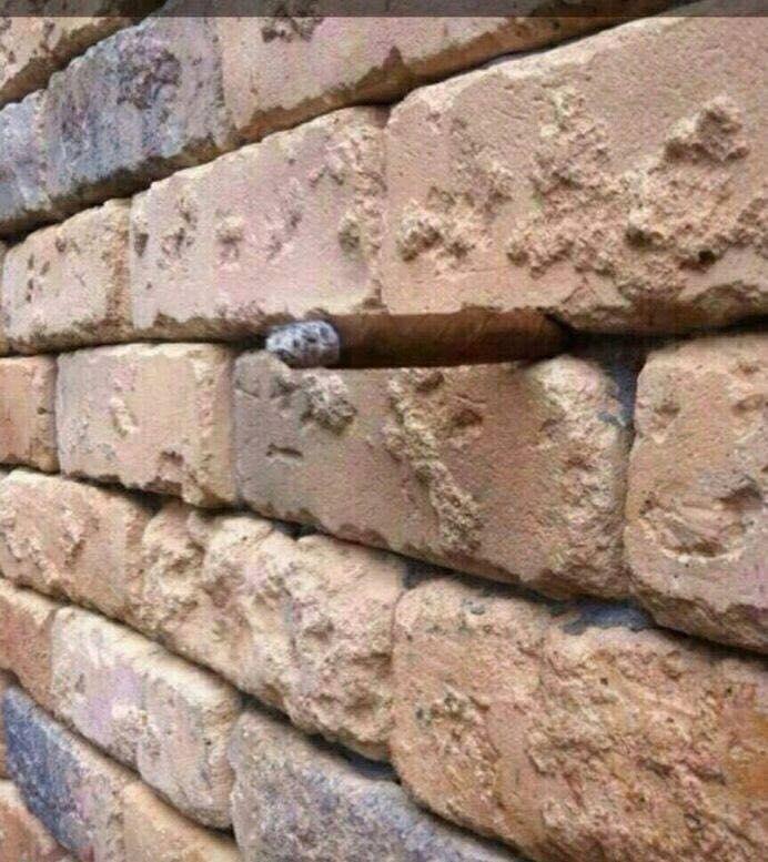 Bizarre Brick Wall Illusion