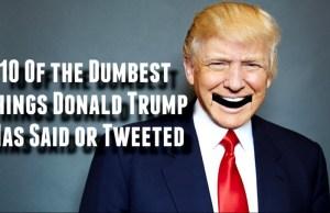 Dumbest Things Donald Trump Has Said