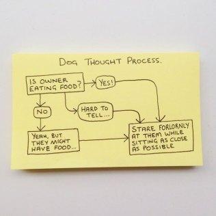 Honest Sticky Notes