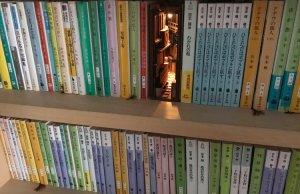 Wooden Bookshelf Inserts Depicting 3D Dioramic