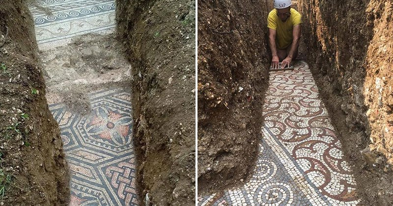 3rd-century-roman-mosaic-discovered-under-vineyard-in-italy-8 (1)
