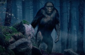 THE TRAIL OF BIGFOOT: THE DISCOVERY