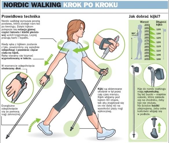 fizjoterapia częstochowa nordic walking 2 - Kijki doNW