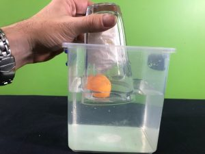 Air takes up space science experiment - beginning to push the glass over the floating ping pong ball