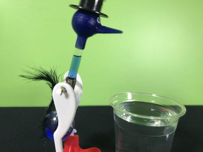 Drinking bird science experiment - wet drinking bird ready to go