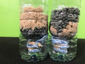 Create a water filter science experiment - completed filters