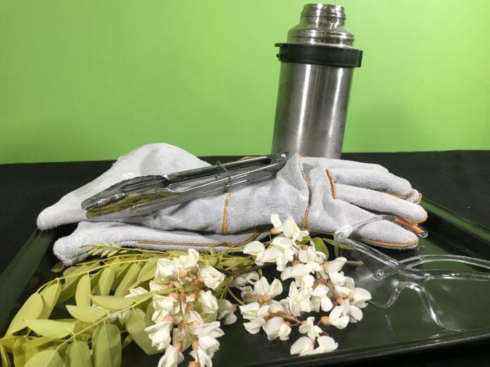 Freezing a flower in liquid nitrogen - materials needed