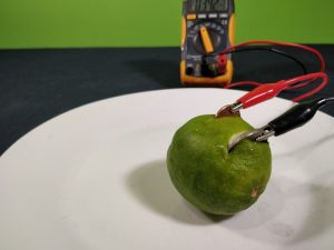A simple lemon battery science experiment showing a green lemon with coins protruding hooked up to a voltmeter