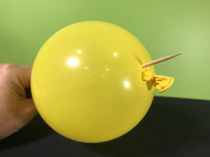 Skewer a balloon science experiment - wooden skewer completely through balloon