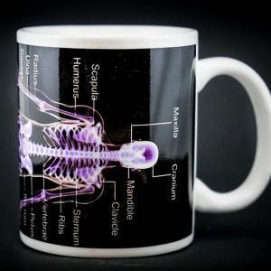 Skeleton Mug