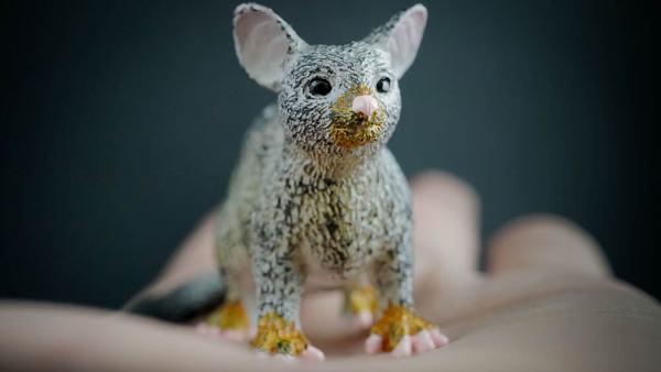 Brushtail possum replica_1