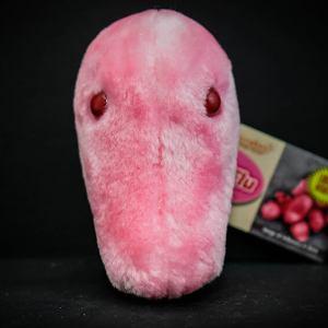 Giant Swine Flu Plush Toy