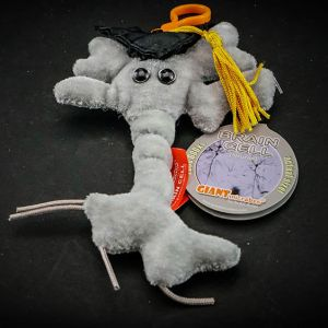 Graduation Brain cell keyring: For the child at heart