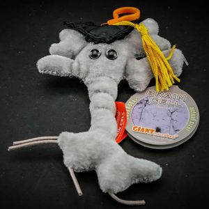 Gigantic Brain Cell plush toy