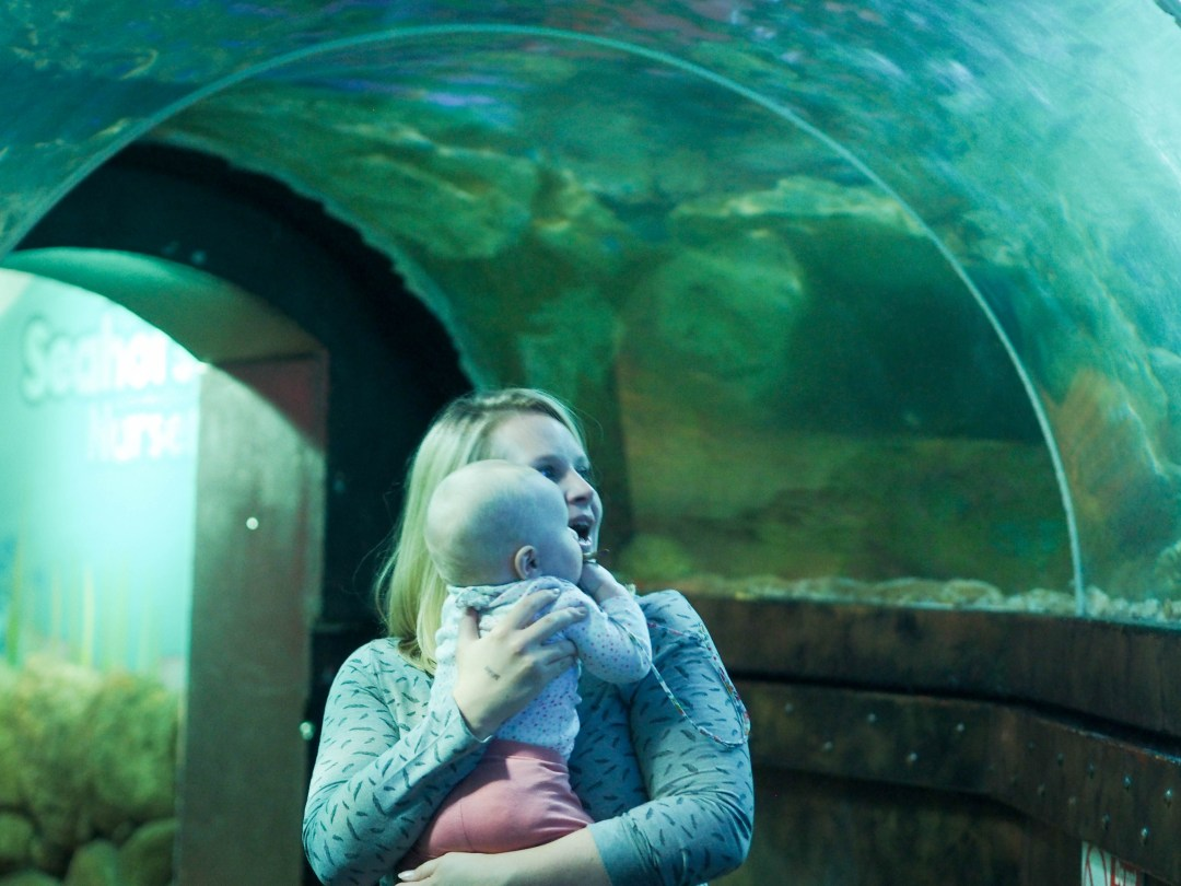 Days Out: SeaLife Centre Brighton at Halloween!