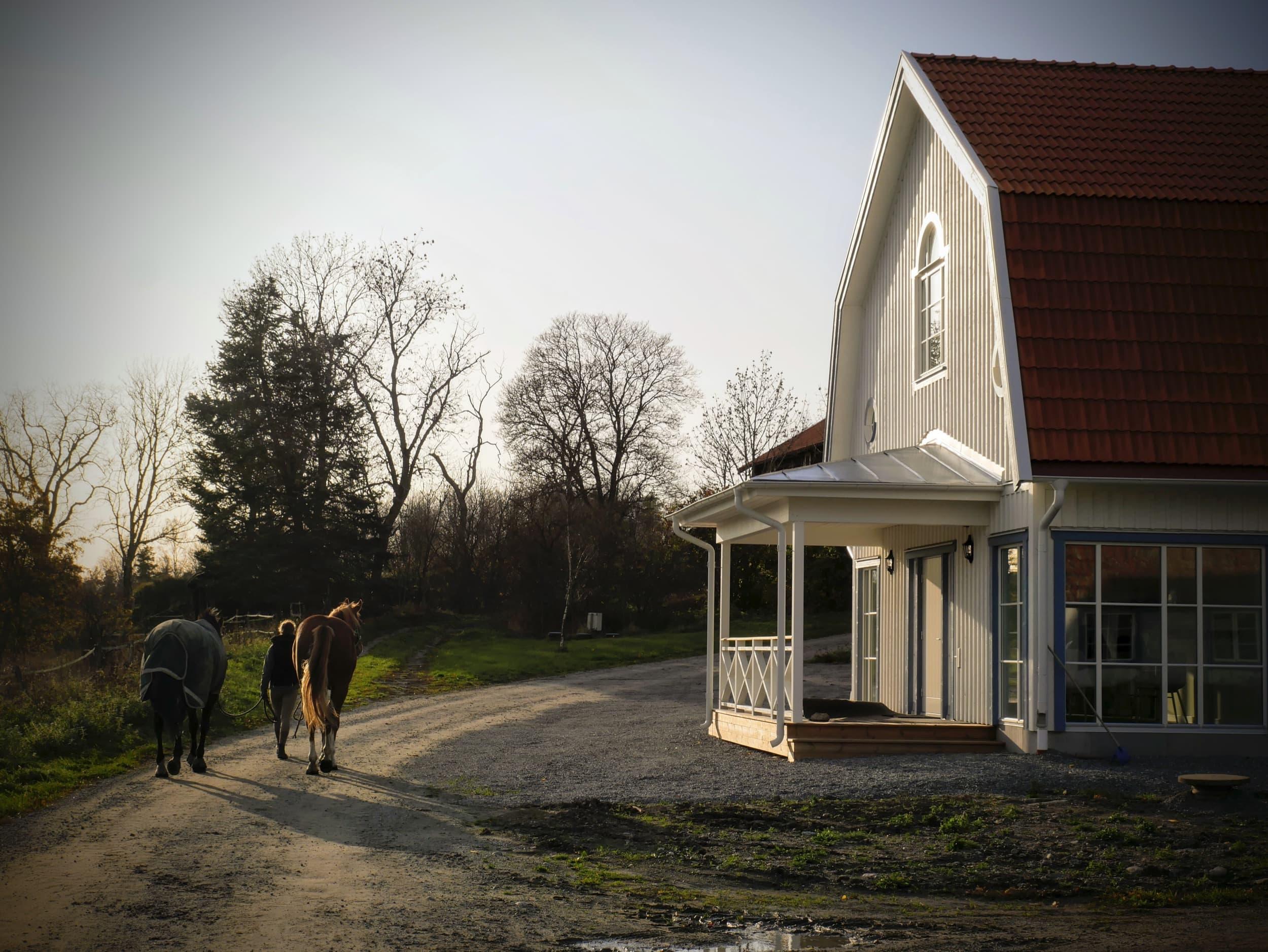 Häst går förbi Jädra gårdshotel