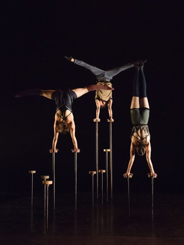"""Les 7 Doigts perform """"Variations 9.81."""" Photograph by Alexandre Galliez"""