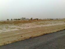 Carpeting of Road in Fatima Jinnah Town Phase 1 Multan (1)