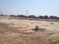 Fatima Jinnah Town Multan B, D, G Block