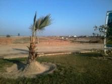 Lahore Motorway City plantation