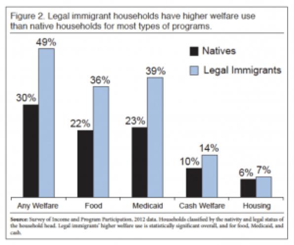 Welfare Use Legal Immigrants