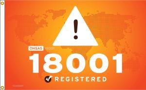 S87 OHS AS18001-3X5-V1 DN