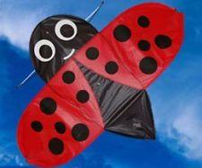 Buzzer bug ladybird kite