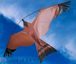 Crop protection kit Hawk kite great as a bird scarer with 6m pole and ground stake