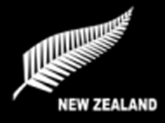 New Zealand Fern Flag 5ft x3ft