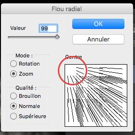 Outil Flou Radial