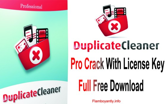 Duplicate Cleaner Pro Crack With License Key Full Free Download