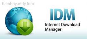 IDM Universal Crack Patch v3 Full Free Download