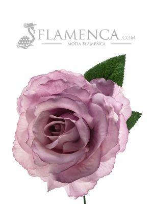 ROSA DE FLAMENCA MALVA