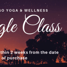 Single Group Yoga Class