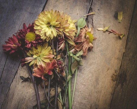 Flowers on a chopping block