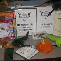 Hummingbird Trunk