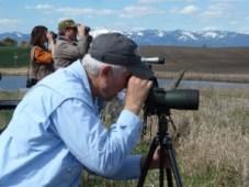 Birdwatching tourWValleystop050413b compressed