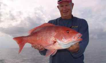 Sarasota Fishing Charter Snapper