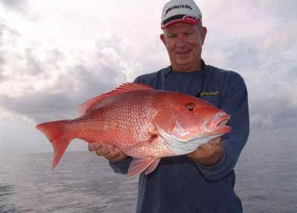 Sarasota Fishing Charter Snapper