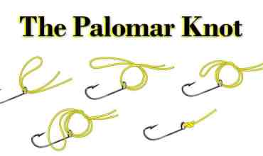 How to tie the Palomar Knot for Inshore Fishing in Bradenton