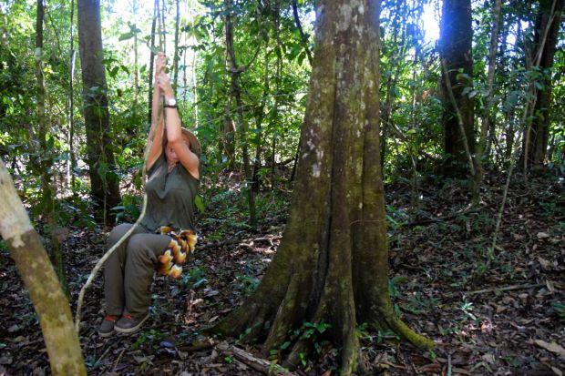 Cristalino_Lodge_Amazônia_103