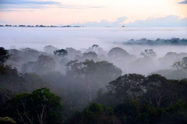 Cristalino_Lodge_Amazônia_129